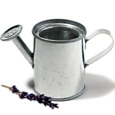 Miniature Silver Metal Garden Watering Can Favors