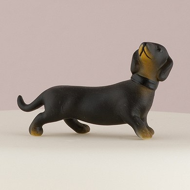 Miniature Black and Tan Dachshund Dog