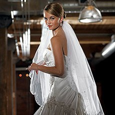 Scalloped Edge & Embroidery Veil