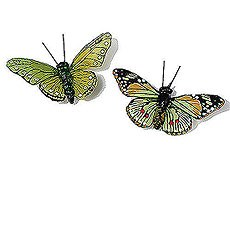 Beautiful Butterfly Decorative Set